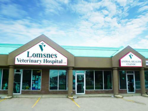 Lomsnes - Exterior